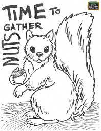 nut coloring page 84 best free teaching tools kids u0027 coloring pages images on