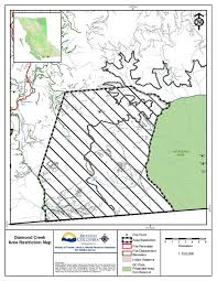 Wildfire Map Kamloops by Diamond Creek Fire Growth Slowed Salmon Arm Observer