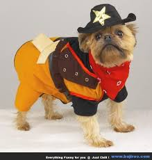 Funny Dog Halloween Costumes 101 Dogs Costumes Images Animals Animal