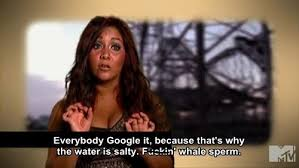 Snooki Meme - snooki calls tan mom a crazy bitch smosh