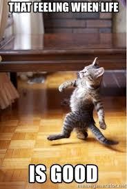 Life Is Good Meme - that feeling when life is good walking cat meme generator