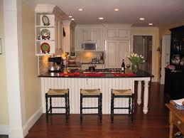 Black Kitchen Cabinets Kitchen Amazing Country Kitchen Plus Black Kitchen Cabinets