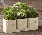 Kitchen Herb Garden Kit Charming Planters For Kitchen Herb Gardens This Old House