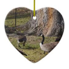 canada geese gifts on zazzle