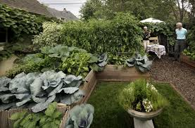 formal vegetable garden in st paul is beautiful productive