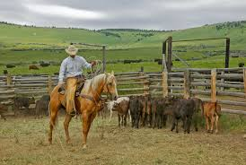 oregon ranches for sale