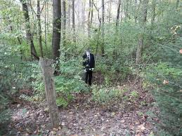 slenderman within the trees by wylrin on deviantart