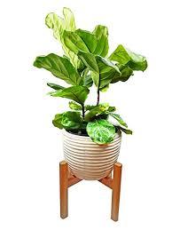 amazon com extra large plant stand mid century modern planter