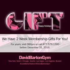Gym Pictures by Gallery David Barton Gym Lookbetternaked