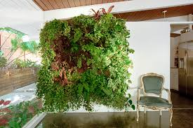 create a beautiful vertical garden on your wall serendipity