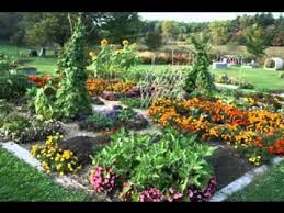 Ideas For School Gardens School Garden Ideas