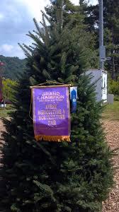 cartner christmas tree farm cartner christmas tree wins grand