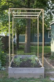73 best garden trellis ideas images on pinterest trellis ideas