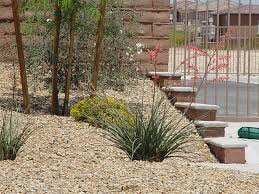 Landscaping Las Vegas by Keep Your Las Vegas Yard Beautiful Year Round With The Right Plants
