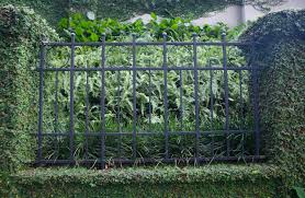 garden design garden design with natural fence ideas u home
