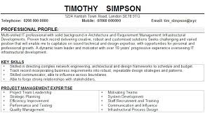 Information Technology Resume Skills Information Technology Cv Sample