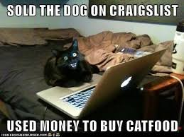 Funny Computer Meme - never ever teach your cat how to use your computer lolcats lol