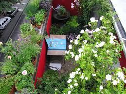 square foot gardening flowers 66 square feet plus terrace garden
