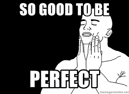 So Good Meme - so good to be perfect feels good meme generator