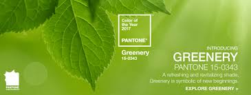 colours of the year 2017 pantone unveils greenary as colour of the year 2017 jewellery