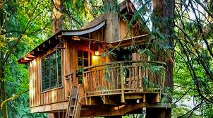 cool tree house amusement parks cool tree house ideas by headrush technologies