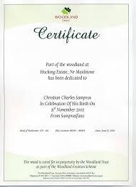 baby dedication certificates templates sample format of affidavit