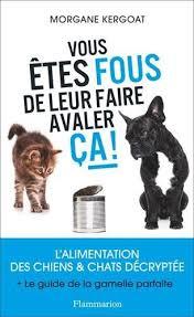 repulsif chien pour canapé magnifique repulsif chien canape meubles thequaker org