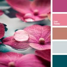 Pink Color Scheme Dazzlingly Bright Palette Expressive One Directly Demonstrates