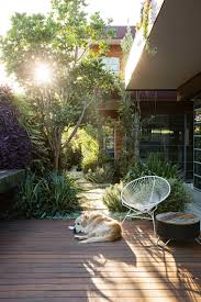 a seamless indoor outdoor courtyard design deck dog garden peter