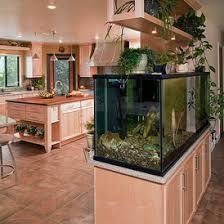 Aquarium Room Divider Built In Aquarium Room Divider With Planter Box Kitchen Remodel