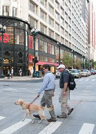How Does A Guide Dog Help A Blind Person The Leader Dog Difference Leader Dogs For The Blind