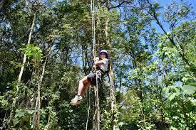 finca modelo ecologica tree top climbing u0026 canyoning in