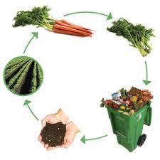 ciclo compost