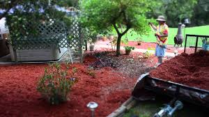 red cypress mulch quick time youtube