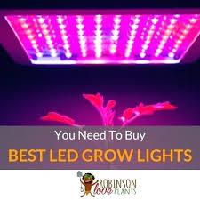 where to buy plant lights where to buy grow lights livingroomwars com