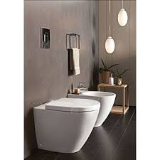 Back To Wall Bidet Floor Standing Back To Wall