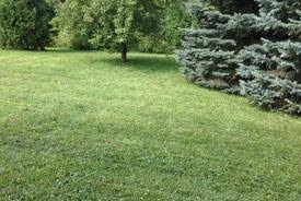 what do landscapers do landscaping lawn care services seasonal clean up ferndale mi