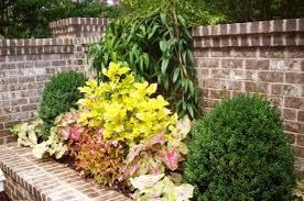 Southern Garden Ideas Southern Flower Garden Ideas Images 19 Awesome Southern Garden