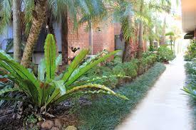 Small Tropical Garden Ideas Tropical Garden Ideas Queensland Stylish Colourful Pocket Garden