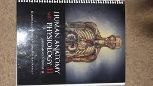 human anatomy and physiology ii laboratory manual laboratory