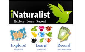 Seeking Youwatch Tewksbury Seeking Naturalists Your Tewksbury Today