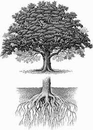 tree roots tattoo google search dragon tattoos tattoo