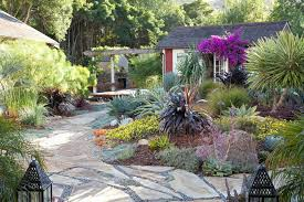 drought tolerant landscaping landscape mediterranean with stone