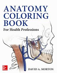 dental anatomy coloring book coloring pages pinterest