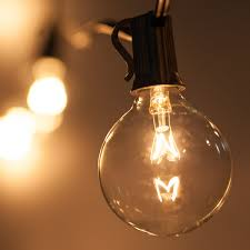 globe light bulbs yard envy