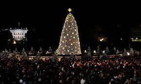 2017 national christmas tree lighting how to watch the national christmas tree lighting if you don t plan