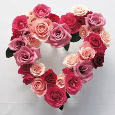 roses for valentines day why do we give roses on s day martha stewart