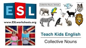 collective nouns esl worksheet teach kids english youtube