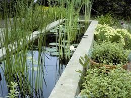 Garden Pond Ideas Triyae Com U003d Raised Garden Pond Ideas Various Design Inspiration
