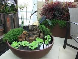 Indoor Vegetable Container Gardening - indoor plant containers u2013 eatatjacknjills com